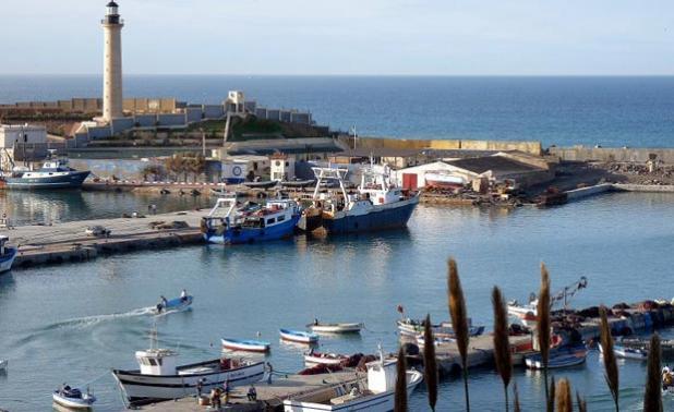 المعارضة تدعو الجزائريين للتحرك السلمي