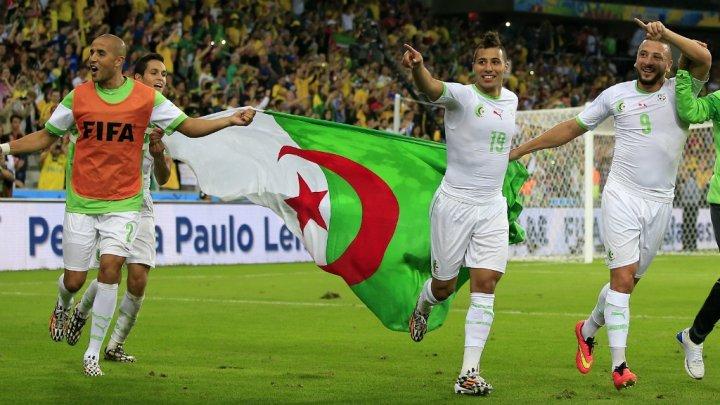 الجزائر تتزعم الرياضية العربية خلال 2014