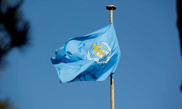 منظمة الصحة العالمية: المغرب خال من داء الملاريا