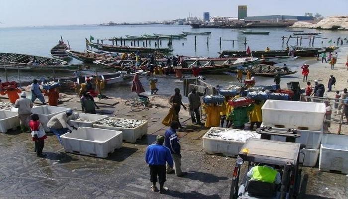 حكومة موريتانيا تطلب من الصيادين الاوروبيين مغادرة الموانئ