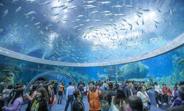 مشروع حوض الأسماك للدار البيضاء يستلهم النموذج الإسباني