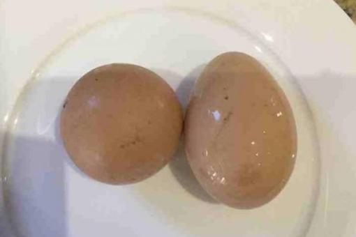 بيضة تتمرد على الواقع وتتخذ شكلاً كروياً!