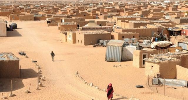 منظمة أمريكية تؤكد ضرورة إحصاء سكان مخيمات تندوف