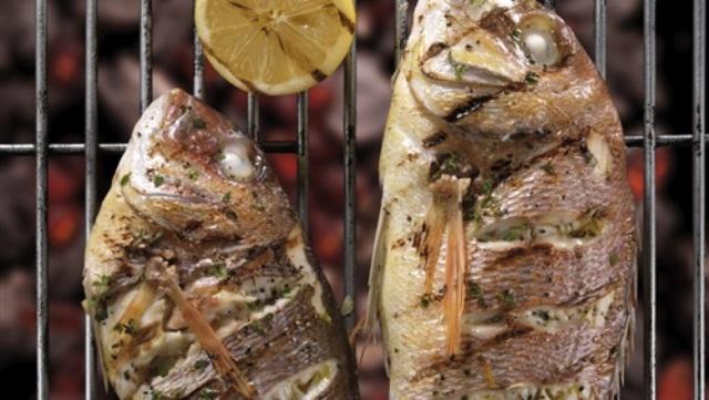 الأسماك الزيتية تقي من السرطان وتقاوم الجلطات