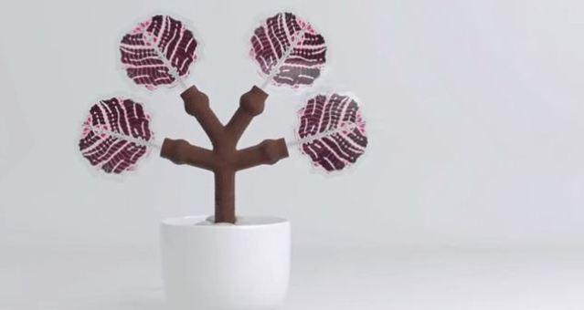 بالفيديو: شجرة ثلاثية الأبعاد تشحن الهواتف