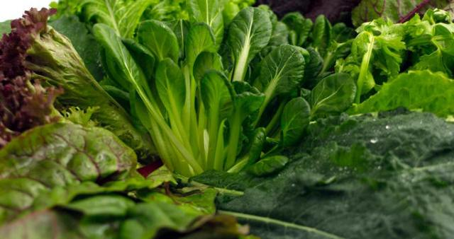 الخضراوات الورقية.. مفتاح الرشاقة والصحة