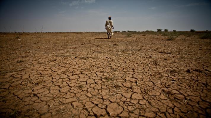موريتانيا تتلقى 10ملايين دولار لمحاربة الجفاف