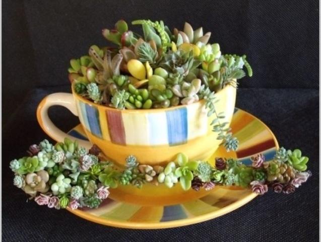 بالصور: 15 فكرة للاستفادة من أكواب الشاي بديكور المنزل
