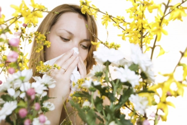 حقائق عن حساسية الربيع وكيفية علاجها