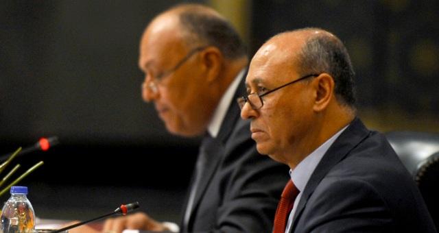 مصر تؤكد أن الوضع في ليبيا يؤثر على أمنها القومي