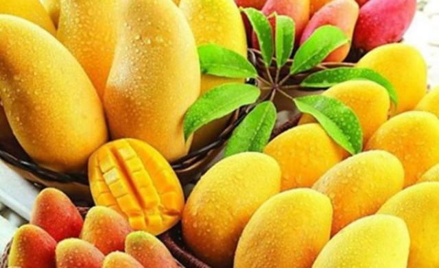 فوائد المانجو تجعلها أكثر الفواكه استهلاكاً في العالم