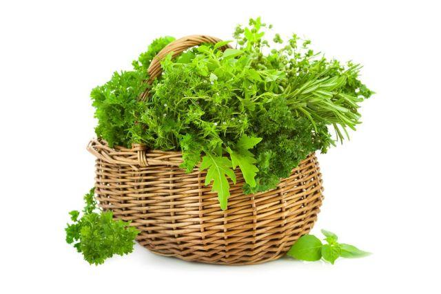 4 أعشاب تحمي الكبد من الأمراض