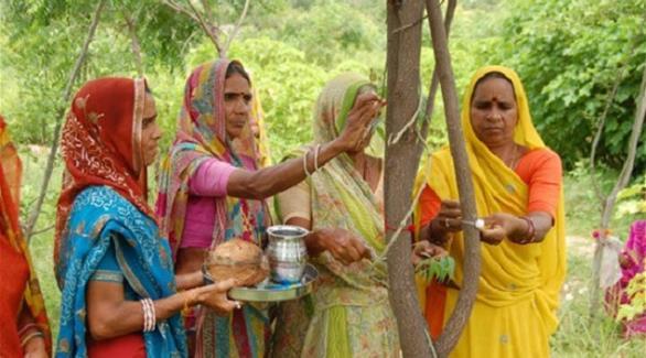 قرية هندية تزرع 111 شجرة عند ولادة كل أنثى