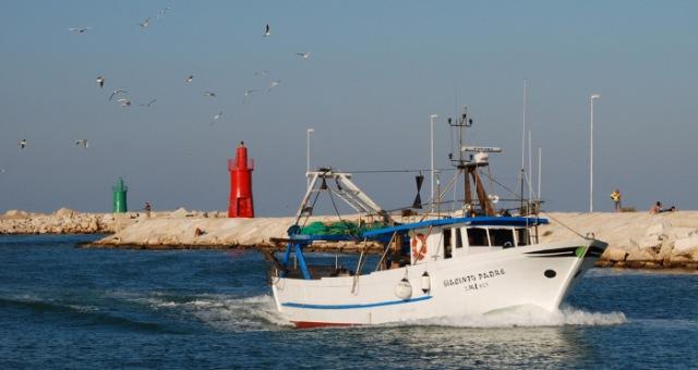 مسلحون يستولون على قارب صيد إيطالي قرابة السواحل الليبية