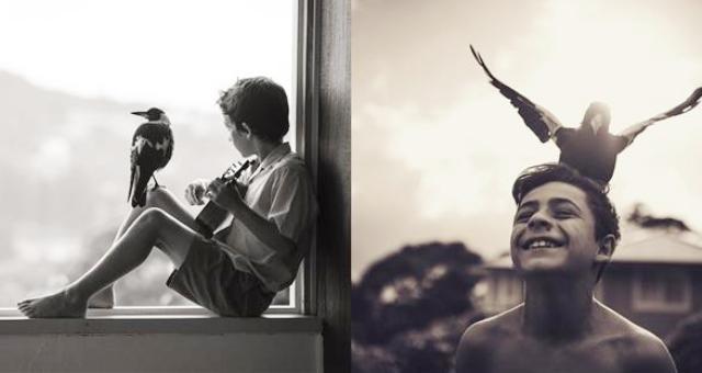بالصور.. صداقة غريبة بين طفل وطائر يتيم