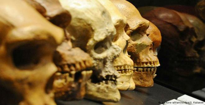 عظام في أثيوبيا قد تكشف عن نوع بشري مندثر