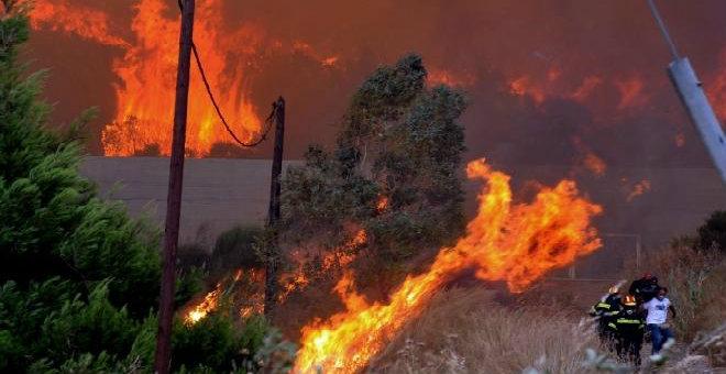 الجزائر..النيران تلتهم 30 ألف هكتار من الغابات سنويا
