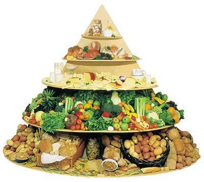 ريجيم الهرم الغذائي المناسب لفصل الصيف