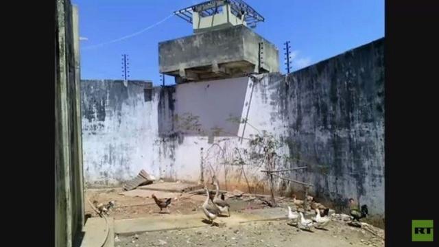 الأوز لتأمين السجون في البرازيل!