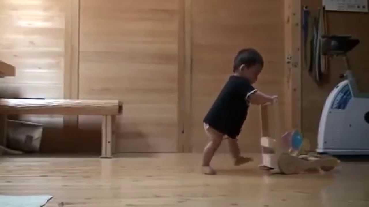 قط يعلّم طفلًا المشي