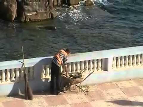 فيديو...هكذا يتخلص عمال النظافة من القمامة في الجزائر