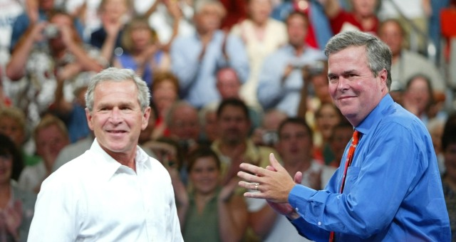 جيب بوش: