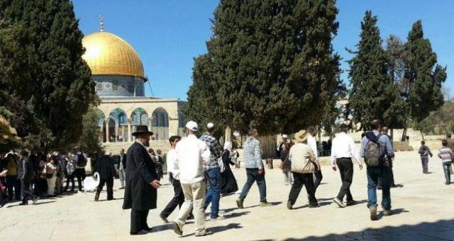 مستوطنون إسرائيليون يدنسون الأقصى مجددا