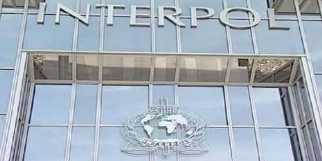 interpol-machahid24