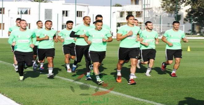 حضور ضعيف للمحترفين في تربص المنتخب الجزائري