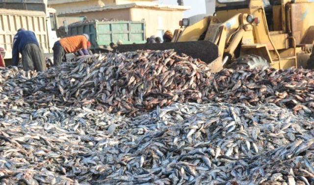 تساؤلات حول مصدر التلوث في السواحل الموريتانية