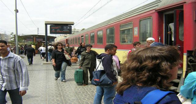 الحلزون يجتاح السكك الحديدية في سطات