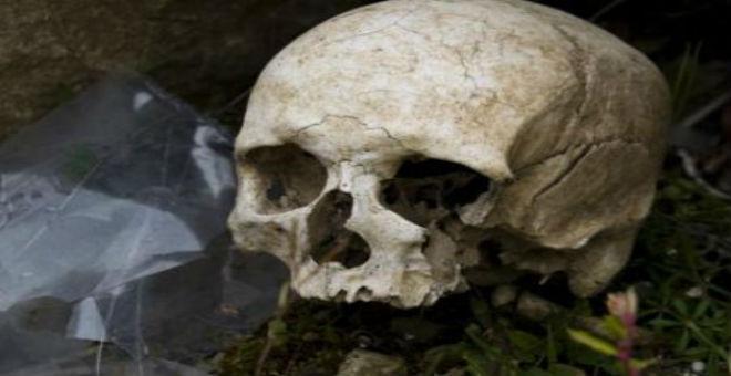العثور على أقدم جمجمة في الأميركيتين