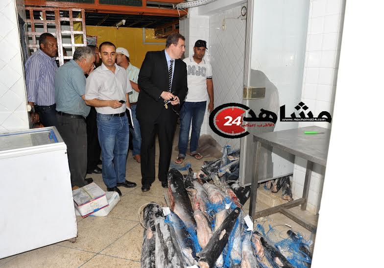 حجز 3 طنّ من الأسماك الفاسدة في الدار البيضاء