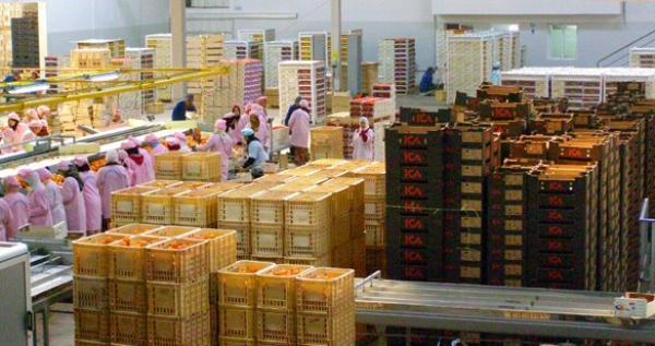 تراجع العجز التجاري المغربي