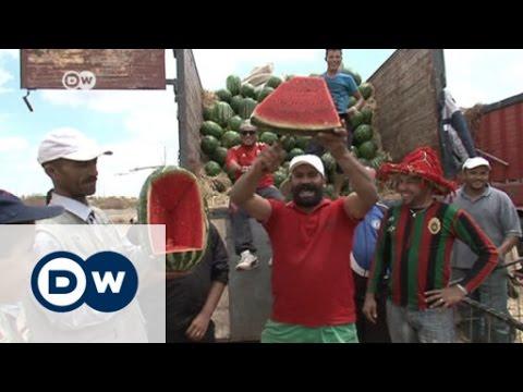 البطيخ المغربي يشهد إقبالا في أوروبا