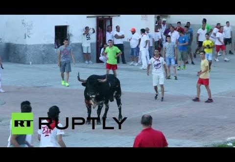 مهرجان الثيران المثير للجدل يعقد مجددا في إسبانيا