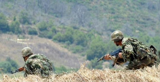 الجزائر: مقتل