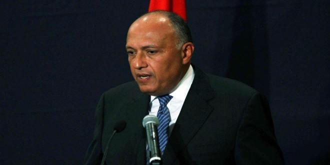 Sameh Chokry1