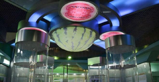 بالصور .. افتتاح أول متحف للبطيخ في العالم
