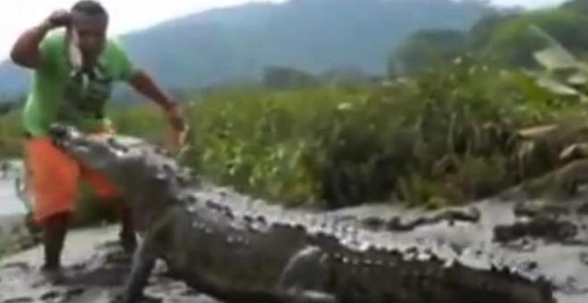 بالفيديو.. رجل يطعم تمساح في فمه بيديه!