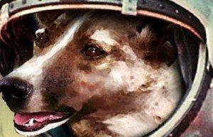 GhadiNews - space dog laika635693632340071455
