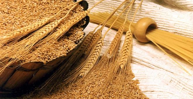 توزيع حصص الدقيق من القمح اللين على أقاليم المملكة