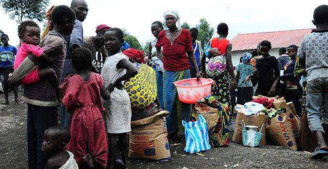 الكونغو تستهلك 14 ألف طن من الحشرات لسد الفجوة الغذائية