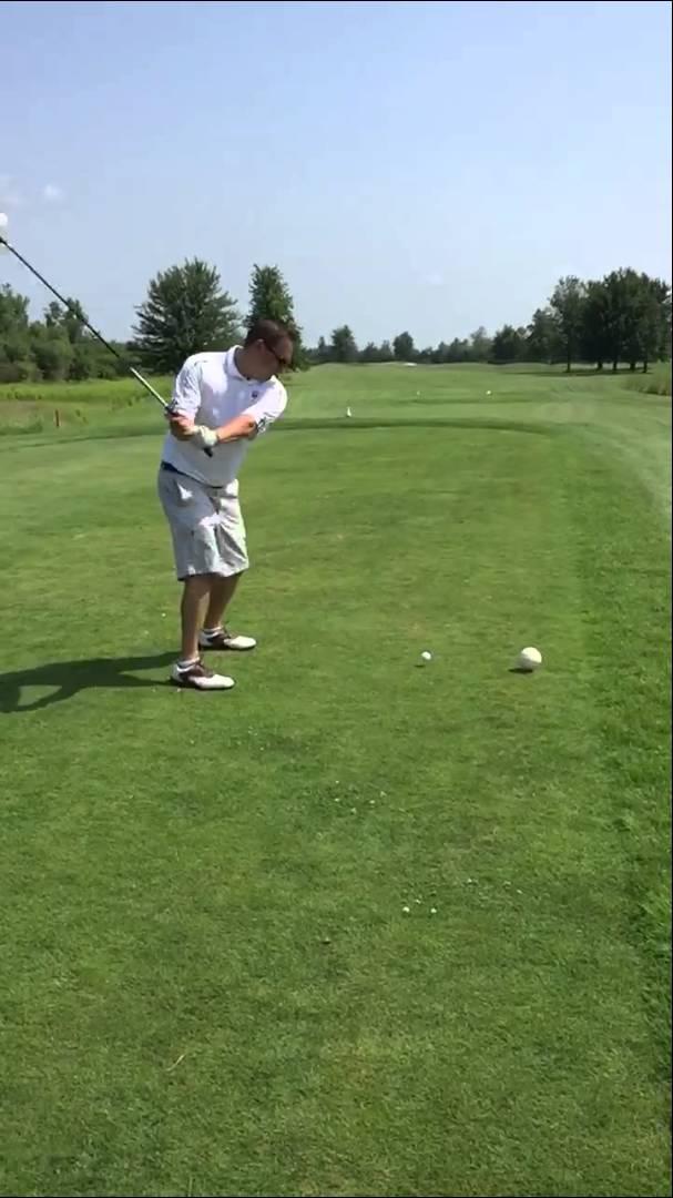 طائر نورس يسقط ضحية رياضة الغولف