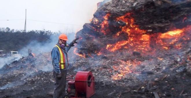 دي كابريو يتبرع ب15 مليون دولار لحماية البيئة