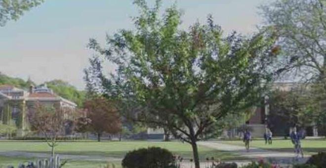 شاهد.. شجرة تنتج 40 نوع من الفاكهةفي وقت واحد