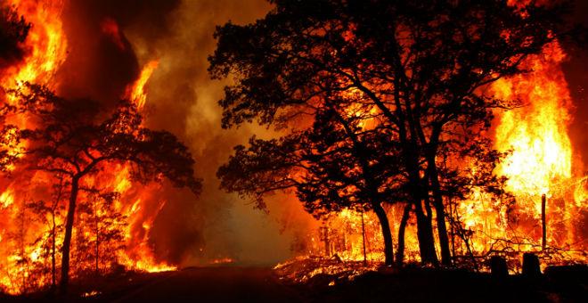 إجلاء نحو 300 شخص بواشنطن بسبب حرائق الغابات