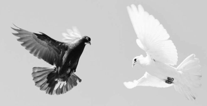 البعد الدينى في العلاقات الدولية: قراءة مفاهيمية