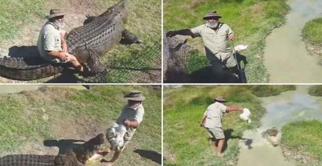 بالفيديو..عجوز يمتطي ظهر تمساح