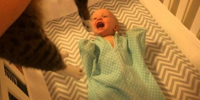 ردّ عفوي لرضيع يرى قطة لأول مرة